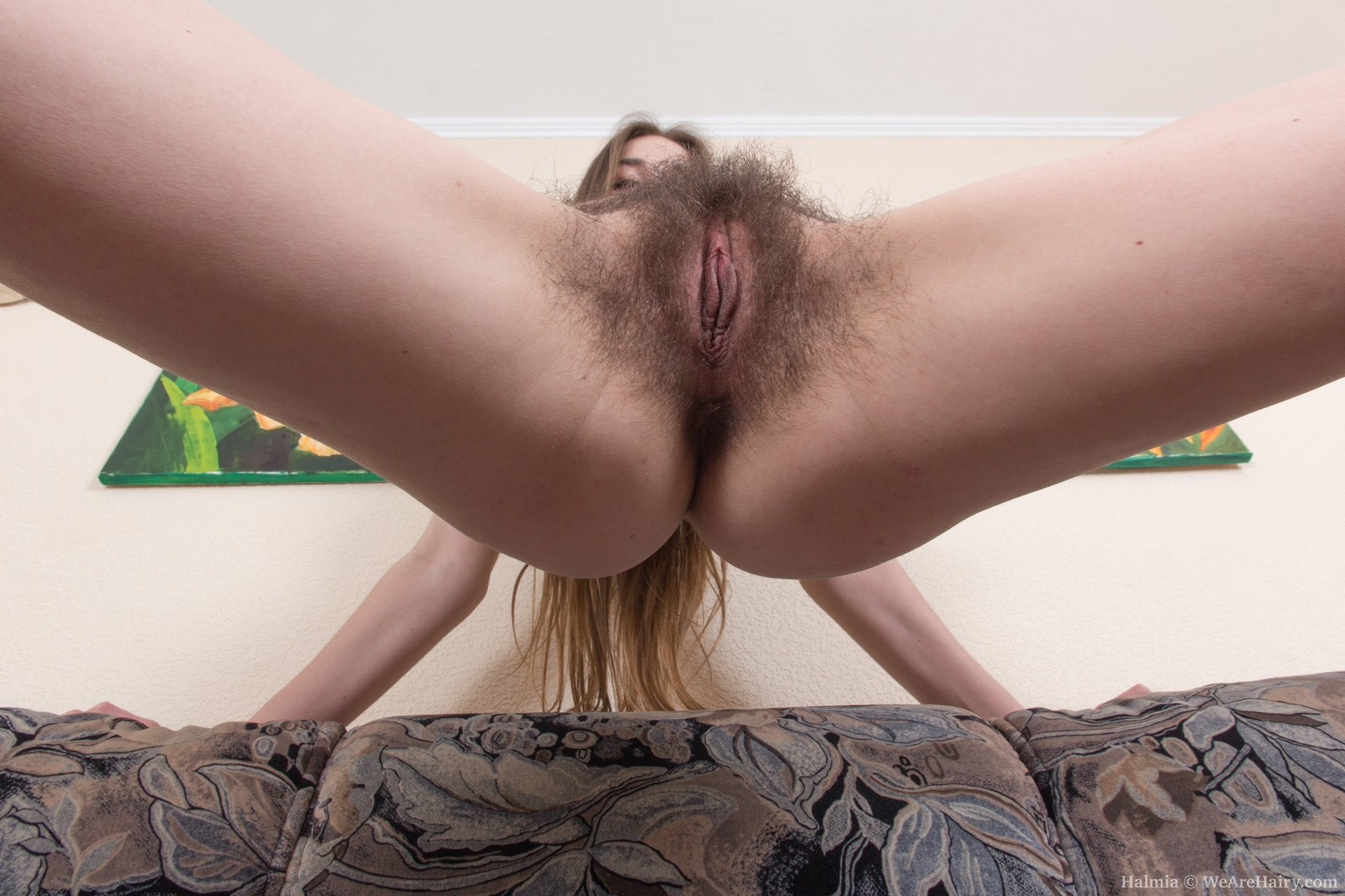 Extreme Hairy Pussies Teens