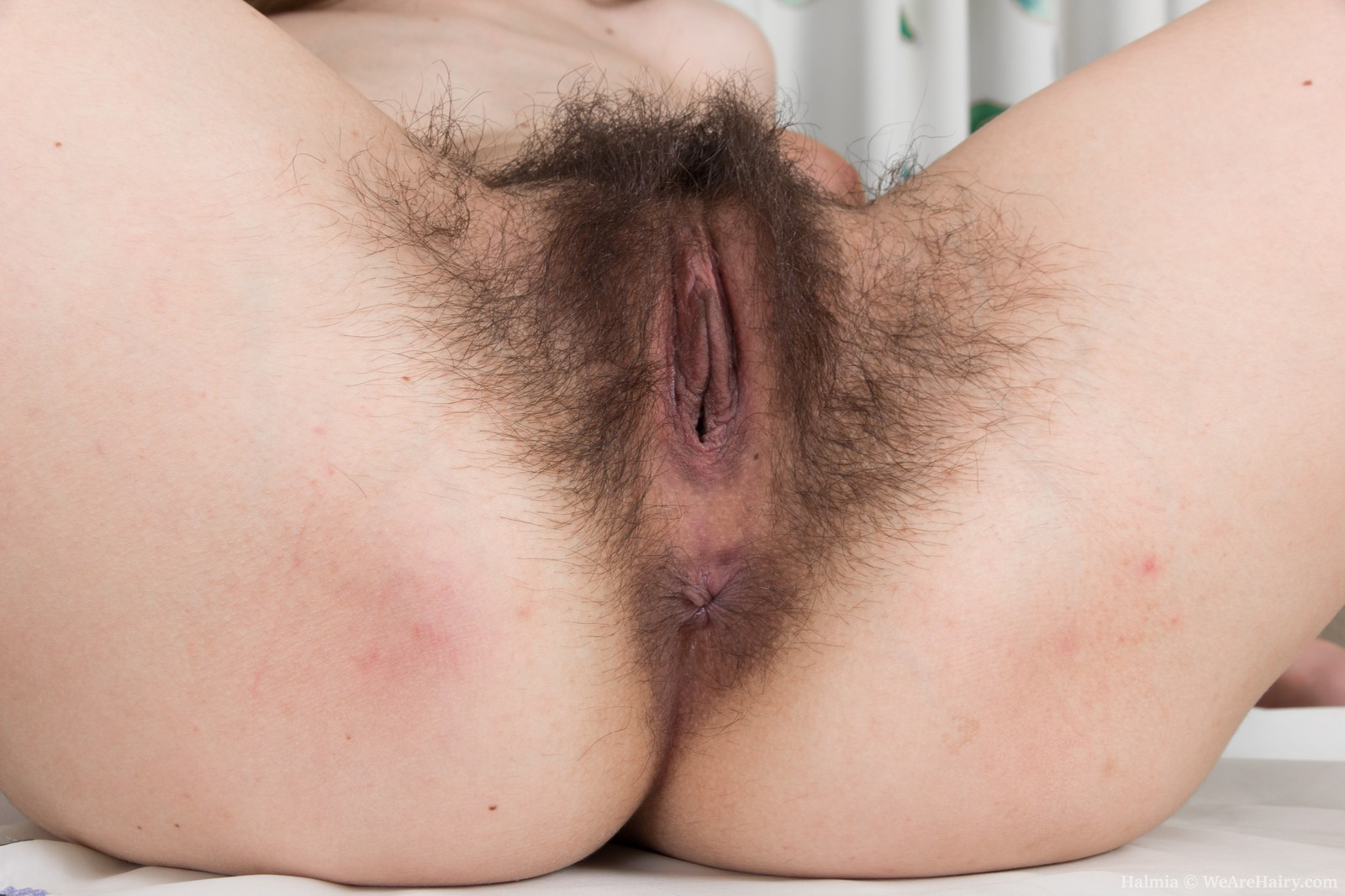Hairy Armpits And A Bushy Cunt -- Hairyfemalespicscom-4073